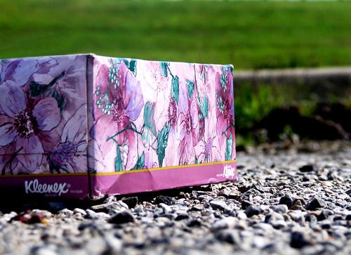 Purple Kleenex Box