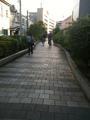 あからさまに暗渠な遊歩道。下流、目黒川方面へ歩く。