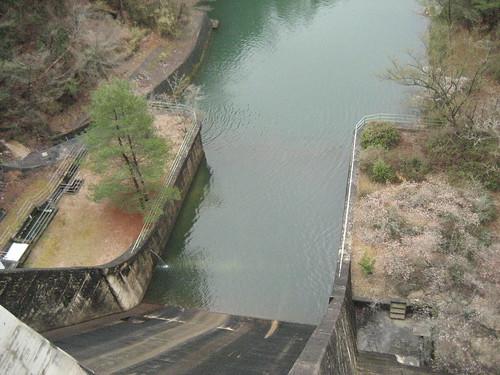 渡之瀬ダム 画像 12