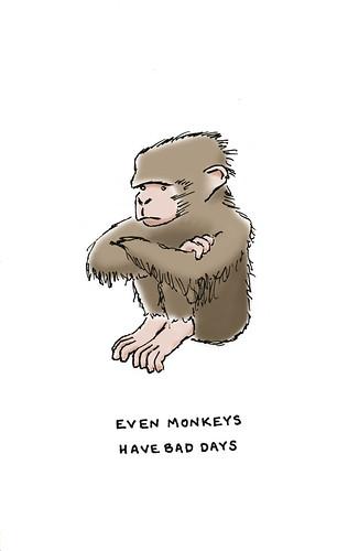 a grumpy monkey