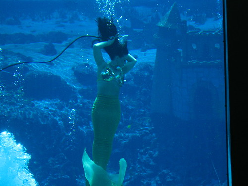 Real Mermaids Found After Hurricane