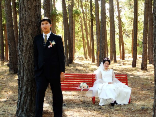 Groom and Bride in the woods