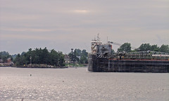 Just Passing Through Part 3 (a Dan of action) Tags: 1000islands boldtcastle stlawrenceriver alexandriabay