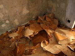 Ya no hay papel en las paredes - by mberasategi