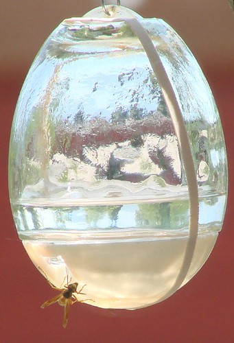 "refract and reflect • <a style=""font-size:0.8em;"" href=""http://www.flickr.com/photos/10528393@N00/1172448875/"" target=""_blank"">View on Flickr</a>"