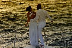 dolphin cruise... (muha...) Tags: life cruise wedding sea island nikon honeymoon dolphin filter gradient maldives muha nikonstunninggallery