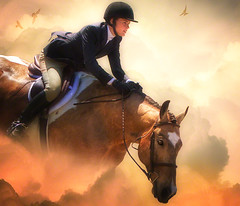 GMHA: Sky Jumper. (Isabelle Ann) Tags: show horse caballo cheval spring isabelle cavallo pferd equine 2010 equus paard autopilot hunterjumper equineart gmha artlibre isabelleann isabelleanngreen equinephotographer isabellegreen