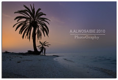 (A.Alwosaibie) Tags: light sea sun iso100 photo nikon shot spot f8 2010 ksa d60  sigma1020mm          aalwosaibie