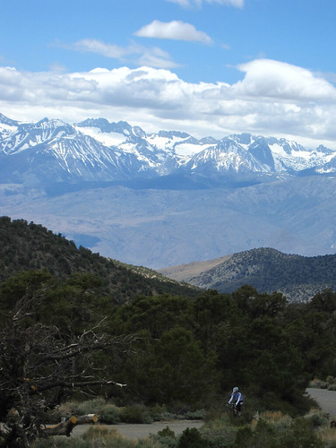 Sierra view from 8000ft