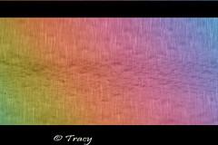 Rainbow Rain (Tracy's Photography) Tags: rain photoshop canon rainbow tracy cs5 flickrcolour grouplife 1000d dragondaggerphoto