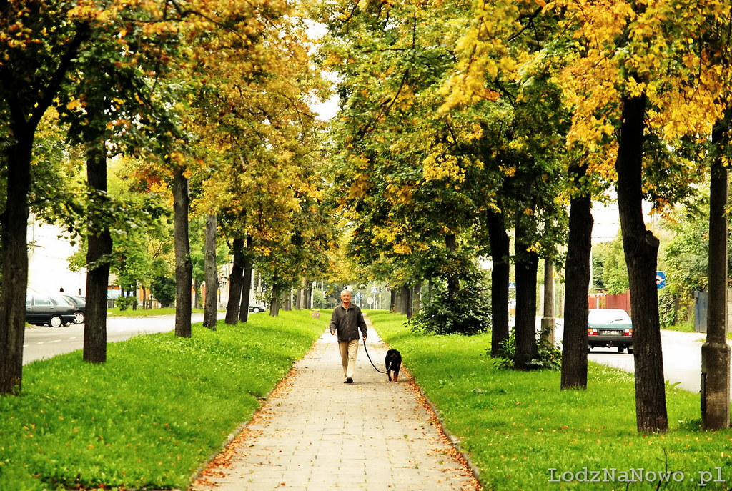 Jesień na Obywatelskiej