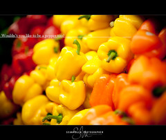 Wouldn't you like to be a pepper too? (Sean Molin Photography) Tags: color pepper photographer framed vegetable peppers grocery greenpeppers redpeppers bellpeppers yellowpeppers project85 seanmolin fwo8514 httpwwwseanmolincom nikonafsnikkor85mmf14g 85of85 eightyfiveofeightyfive