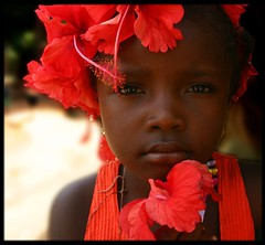 girl with red flowers (LindsayStark) Tags: africa travel portrait girl children war sierraleone conflict humanrights humanitarian displaced idpcamp refugeecamp idps idp humanitarianaid emergencyrelief idpcamps waraffected mywinners