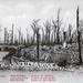 After the War: Ruins of the Castles (Postcard), Kemmel Hill, Flanders, Belgium, Undated