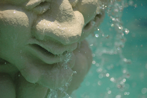 Fountain Face detail