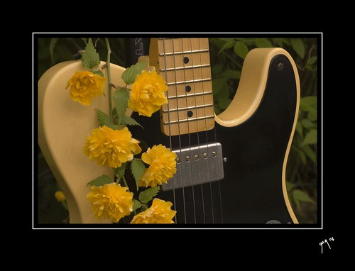 telecaster wallpaper. telecaster and Flowers II