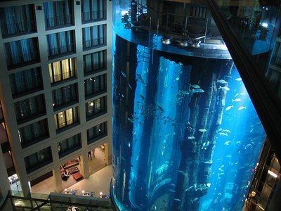 cylindrical aquarium1