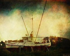 (MaryTClark) Tags: old art texture abandoned boat skeletalmess