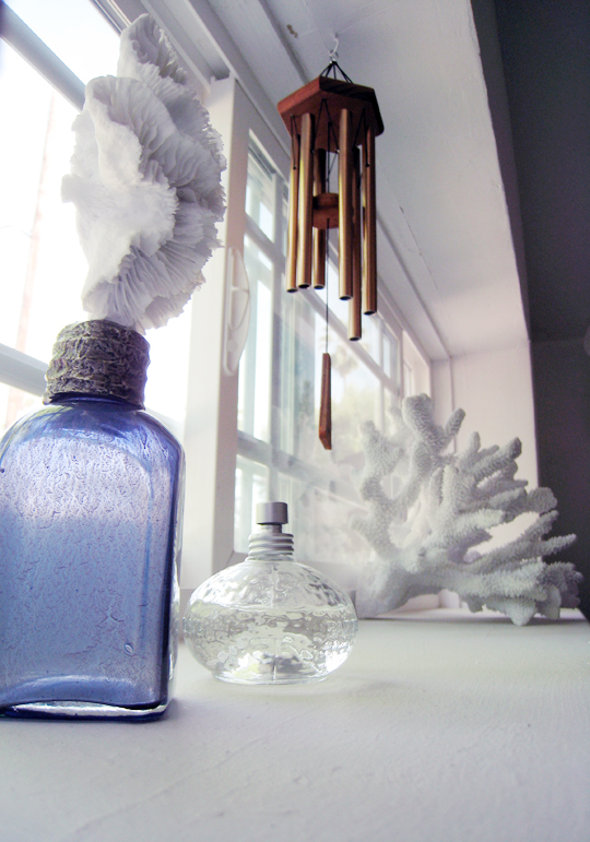 Bathroom Window+Coral+Beach Decorating Ideas+Pottery Barn Faux Coral+L'occitane -2-light