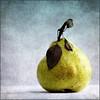 ❦ just a pear ❧ ( Bianca Dörfel ) Tags: impressedbeauty updatecollection ucreleased