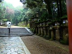 Nara-Gran Santuario Kasuga-Japn 04 (Rafael Gomez - http://micamara.es) Tags: heritage japan de la shrine great gran nara shinto templo kasuga japn humanidad patrimonio ph456 sintoista