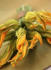 Flowers - Zucchini Blossoms Bouquet [04]