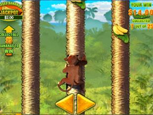 free Banana Monkey free spins