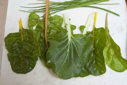 chard, bok choi and chives from the garden (to add to my curry friend rice)