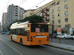 Naples Trolleybus