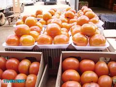caqui (jmarconi) Tags: feira persimmon ceasa diospyroskaki dispiro