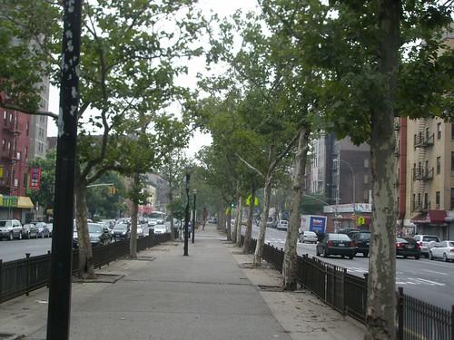 Allen Street Lower East Side New York