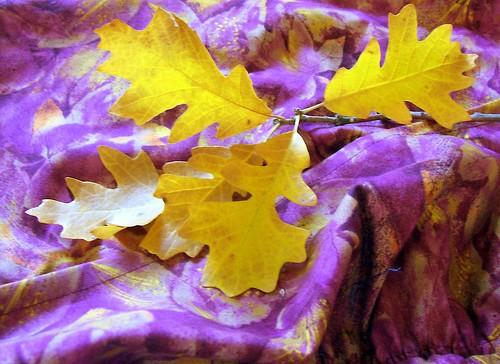thinking on autumn