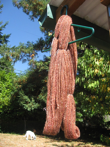 hanging yarn.jpg