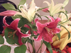 Lillies are blooming