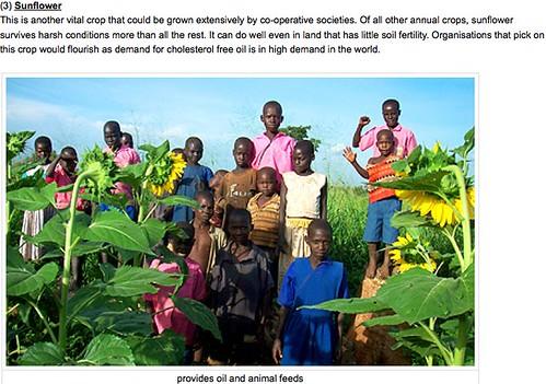 from a Jokondino Okema blog