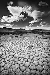 Cracked but not broken... Pt.2 (Jesse Estes) Tags: oregon desert southeast jesseestes jesseestesphotography