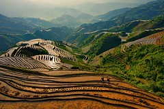 Dragon's Backbone Rice Terrace (Sijanto) Tags: mywinners qualitygold mygearandmepremium mygearandmebronze mygearandmesilver mygearandmegold mygearandmeplatinum blinksuperstars