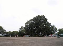 週刊真木よう子ロケ地めぐり
