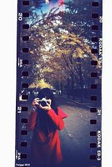 winter (Twiggy Tu) Tags: china winter film me lomo beijing ginkgobiloba twiggy 2010 photobybrad sprocketrocket