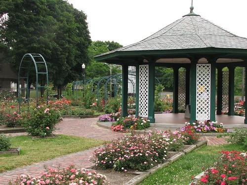 syracuse rose garden