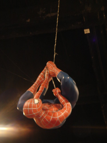 Spidey, chillin from the ceiling.