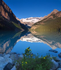 Lake Louise Reflections (dbarronoss) Tags: flowers mountain lake snow canada sunrise alberta banff lakelouise hypericum supershot specland specnature anawesomeshot superbmasterpiece diamondclassphotographer top20blue frhwofavs