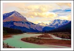 Jasper Rockies