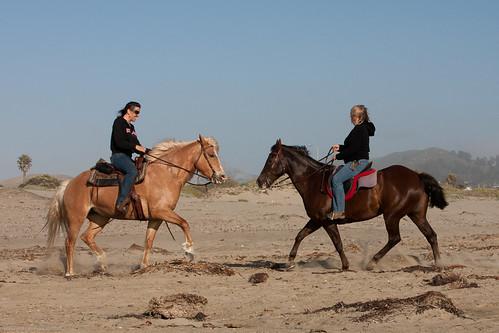 L-R Susanne Nuckols and Lynda Roeller - Roeller Nuckols Equestrians Morro Strand 08 June 2010 -- nuckols roeller equestrians seaside race morrostrand statebeach reins horse saddle horses morrobay