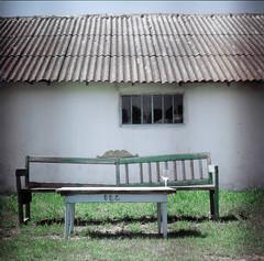 old bench (Vsevolod Vlasenko) Tags: 120 bench spring wine odessa ukraine hasselblad oldhouse 501c 80mmplanar christophelacarin