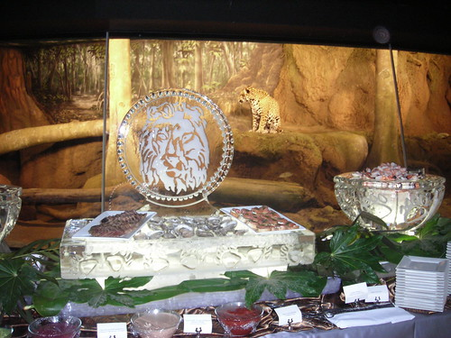 Lion Seafood platter w Ice bowls ice sculpture