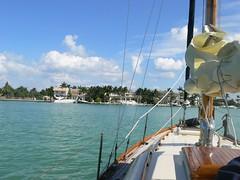 P1030323 (nomorevpl) Tags: sailing miami sailingboat barcaavela
