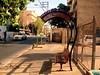 Tel Aviv Israel July '07 - 33 (ohjaygee) Tags: city urban streets israel telaviv digi grittiness nonlomo