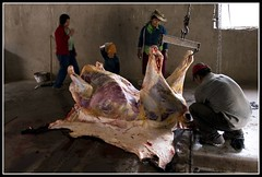 Matadero Iruya IV (zaqi) Tags: trip travel holiday argentina work trabajo knife culture documentary meat slaughter carne res cultura salta noa iruya documental kolla cuchillo matadero zaqi szaqii myargentina
