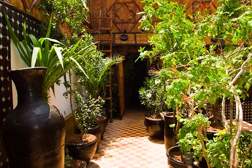 Best place in morroco,riad marrakech-dar najat